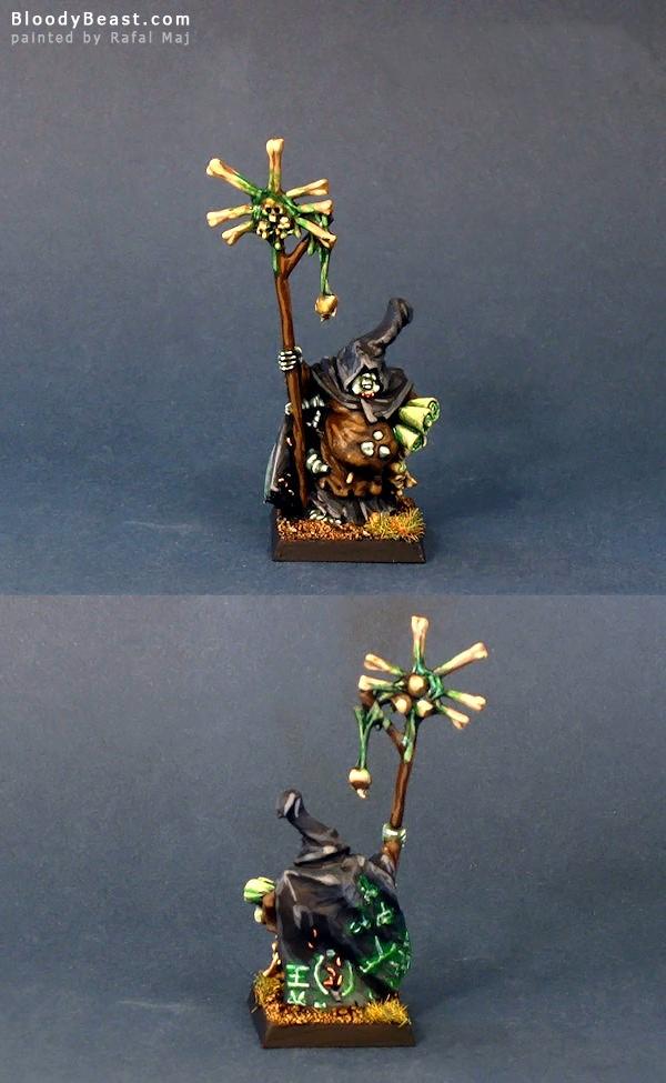 Sorcerer of Nurgle painted by Rafal Maj (BloodyBeast.com)