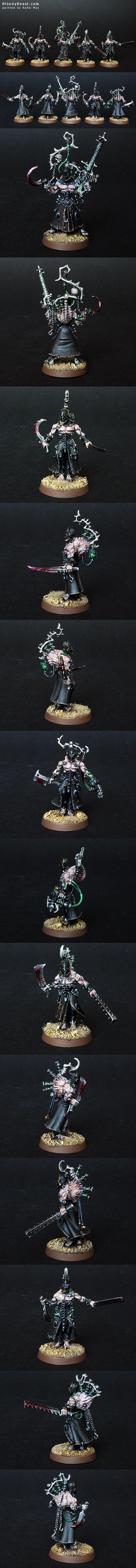 Dark Eldar Wracks painted by Rafal Maj (BloodyBeast.com)