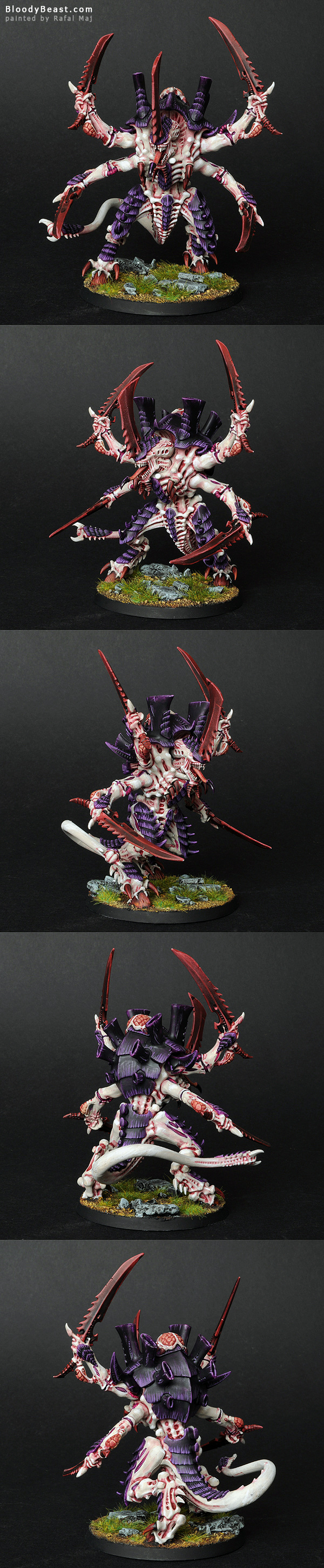Tyranid Swarmlord painted by Rafal Maj (BloodyBeast.com)