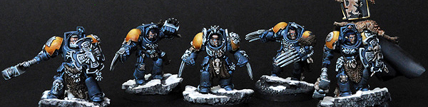 Space Wolves Wolf Guard Unit