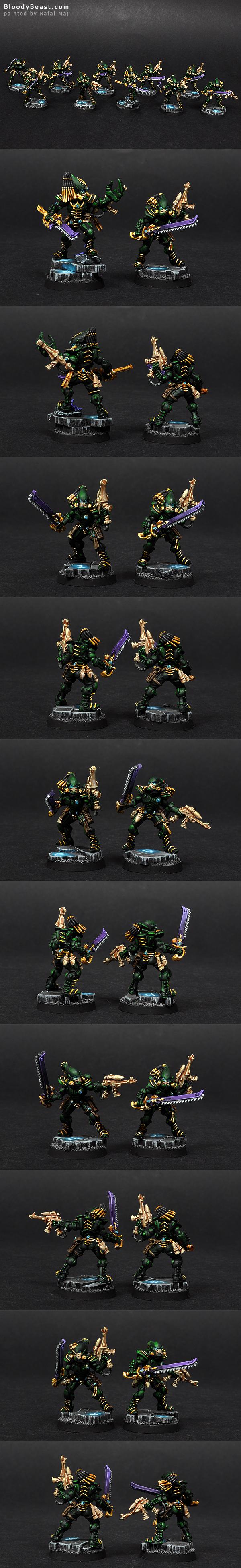 Eldar Striking Scorpions painted by Rafal Maj (BloodyBeast.com)