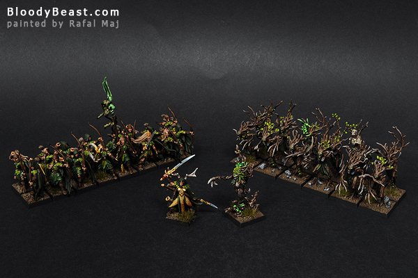 Wood Elves Warband painted by Rafal Maj (BloodyBeast.com)