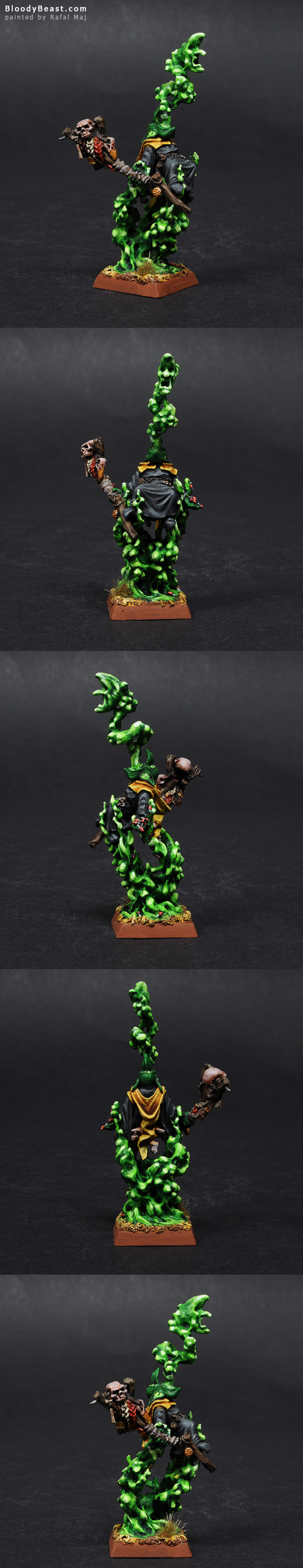 Night Goblin Shaman painted by Rafal Maj (BloodyBeast.com)