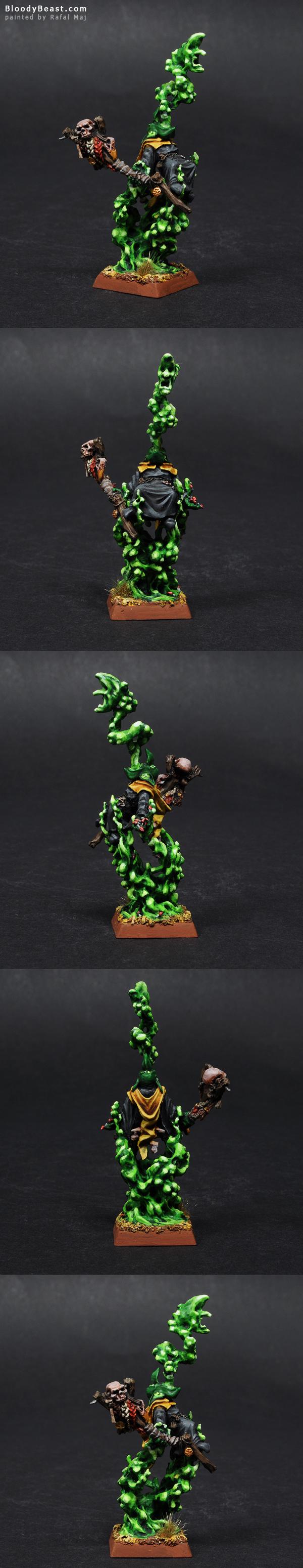 Night Goblin Shaman painted by Rafal Maj (BloodyBeast.com)