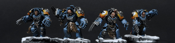 Space Wolves Wolf Guards