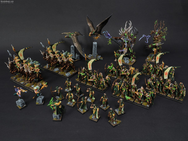 Wood Elves Army painted by Rafal Maj (BloodyBeast.com)