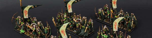 Wood Elves Glade Guards