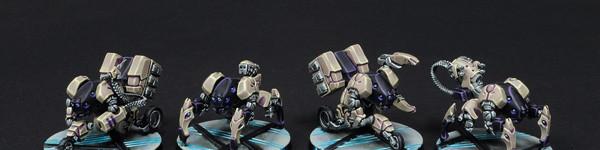 Aleph Probots And Rebots