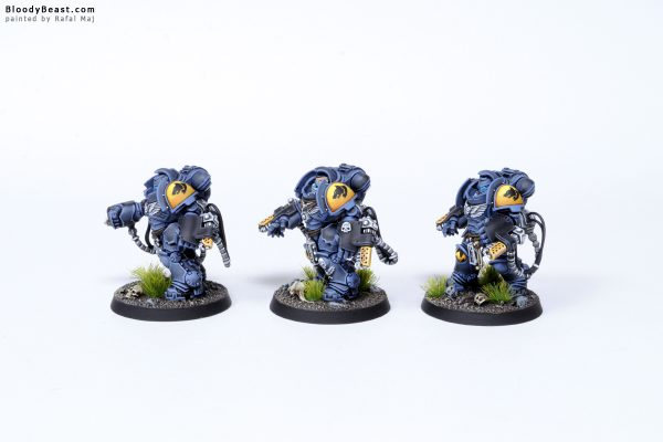 Tooth and Claw Space Wolves Primaris Agressors 2