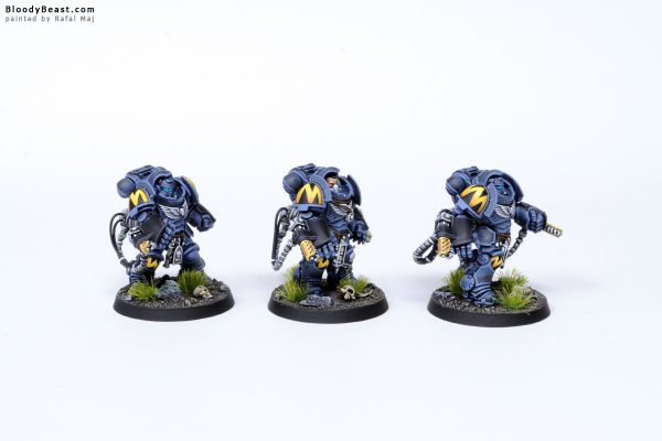 Tooth and Claw Space Wolves Primaris Agressors 3