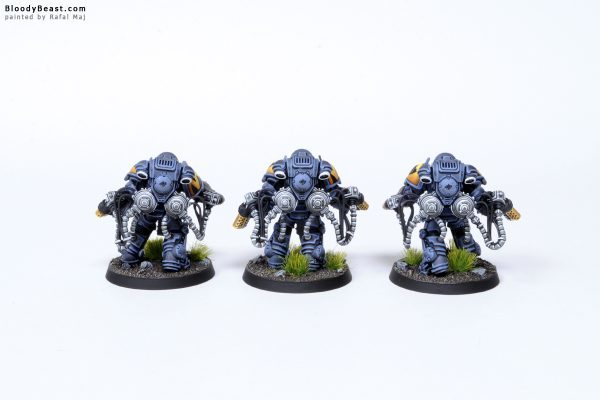 Tooth and Claw Space Wolves Primaris Agressors 4