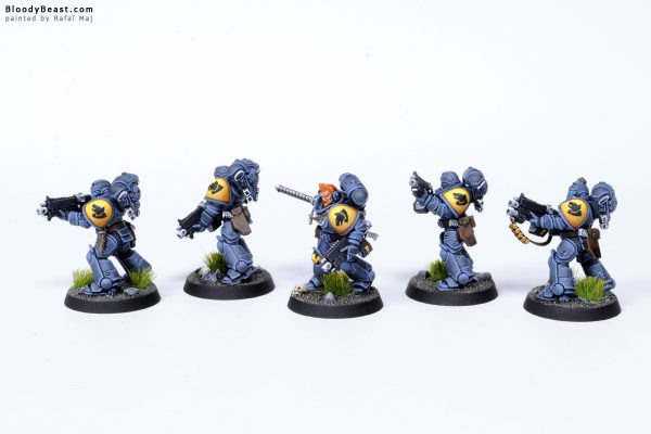 Tooth and Claw Space Wolves Primaris Intercessors 2